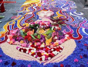 Assisi per papa francesco un grande tappeto di fiori con 1 milione