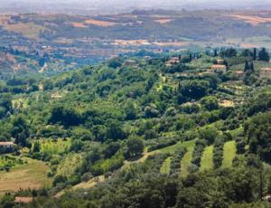 """Perugia/ Nuova vita per Parco Lacugnana. Arcudi: """"E' un ..."""