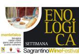 Sagrantino Wine Festival.jpg